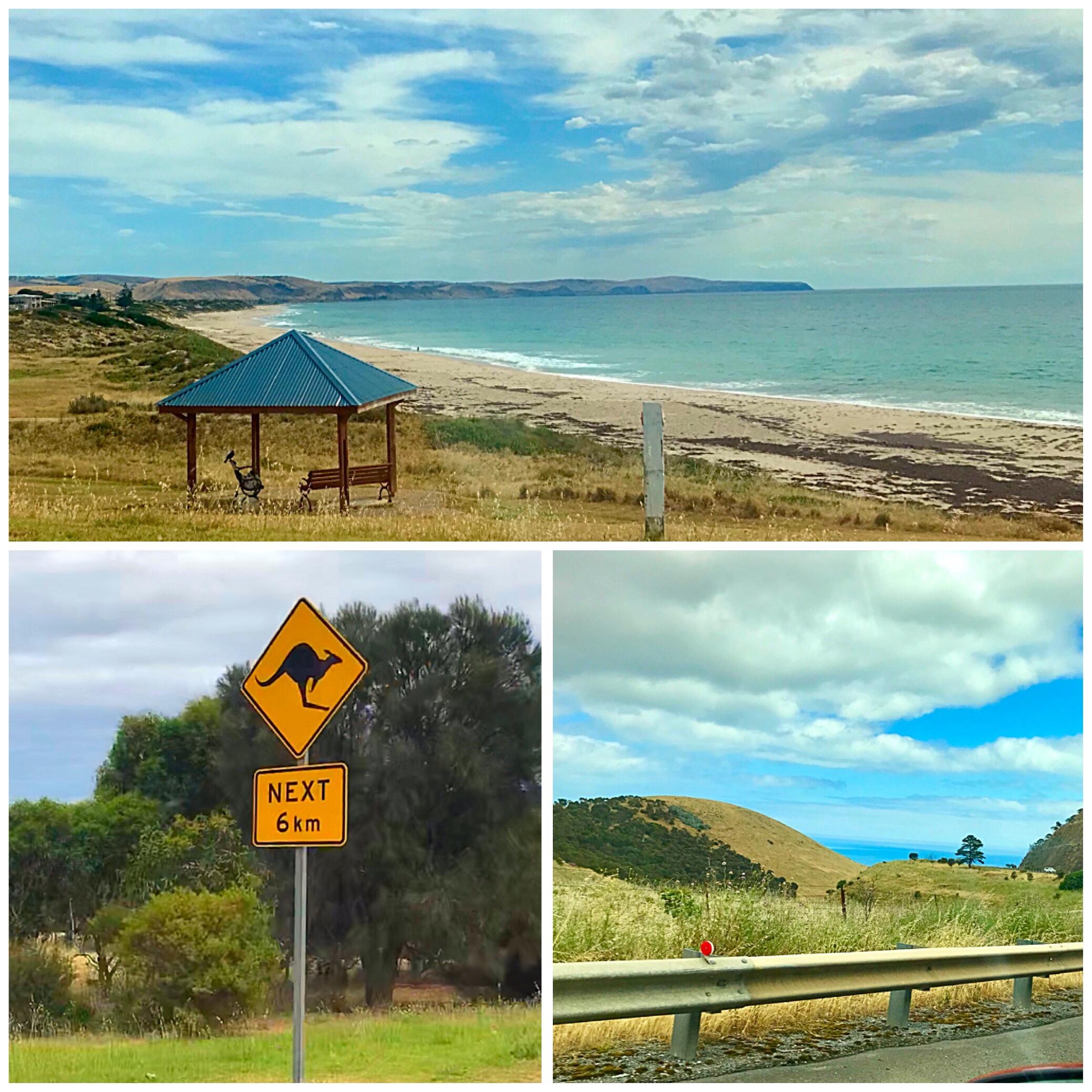 Południowa Australia – co porabiamy?