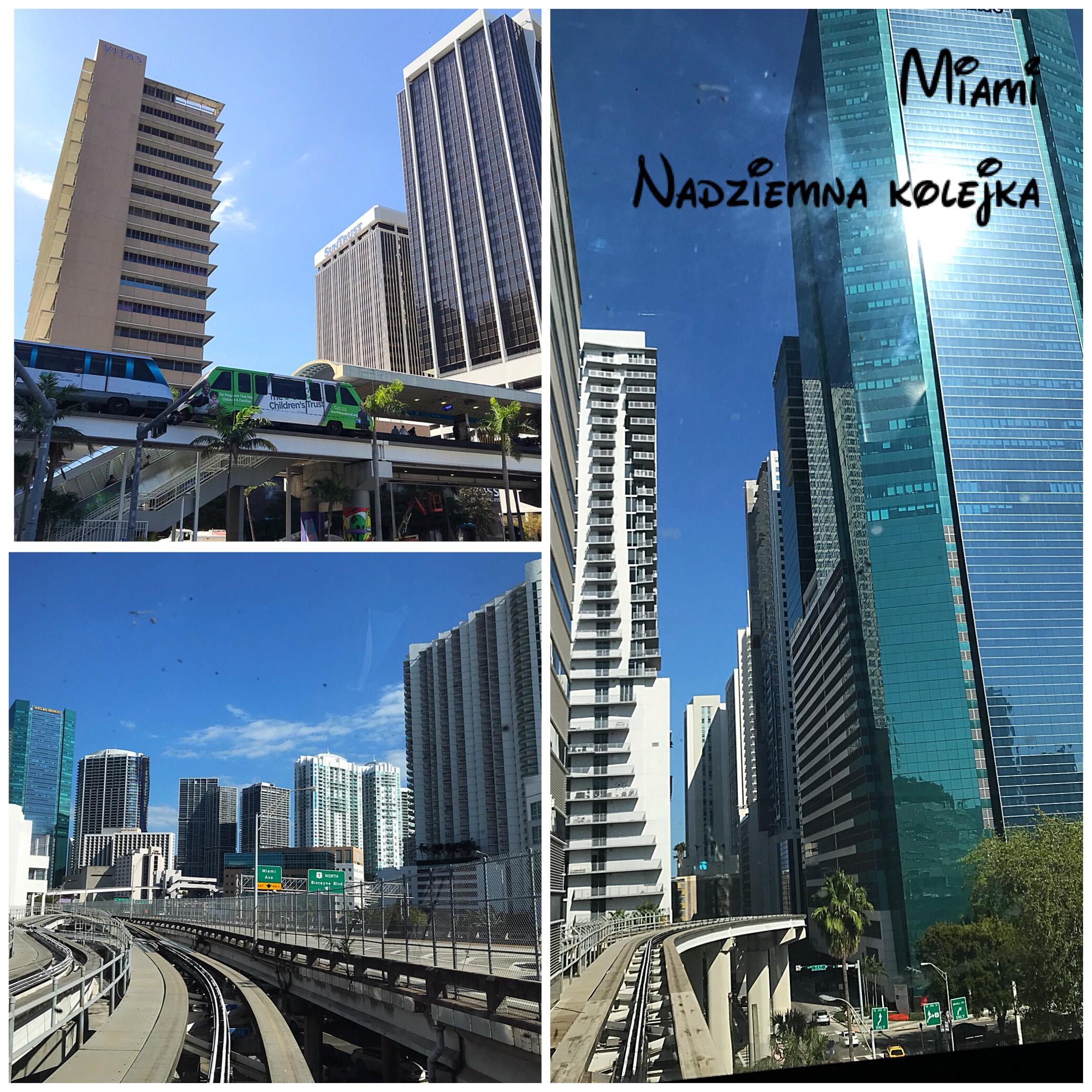 Miami, Waszyngton, Nowy Orlean